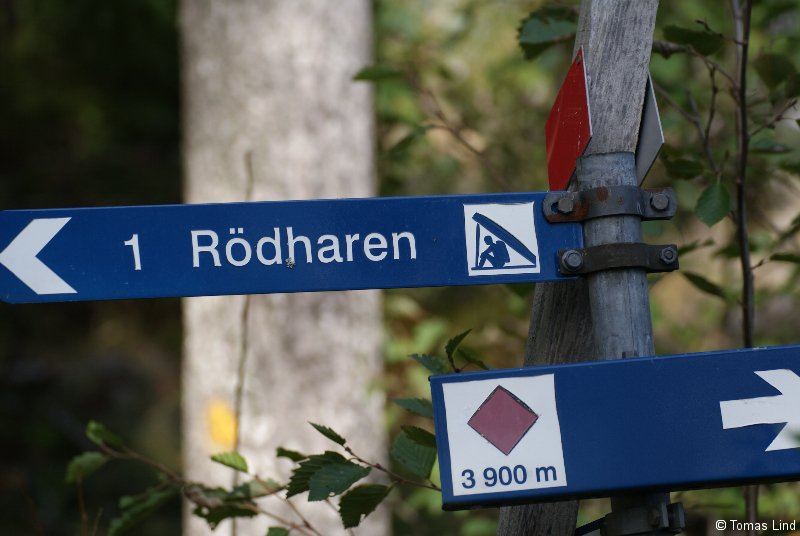 Ulvön, Ulvöhamn, Röharen